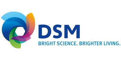 DSM_logo_400x200